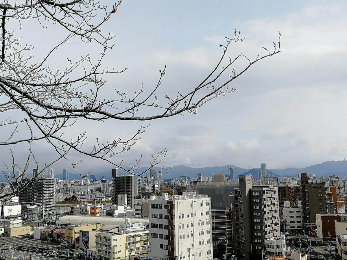 広島市内眺望