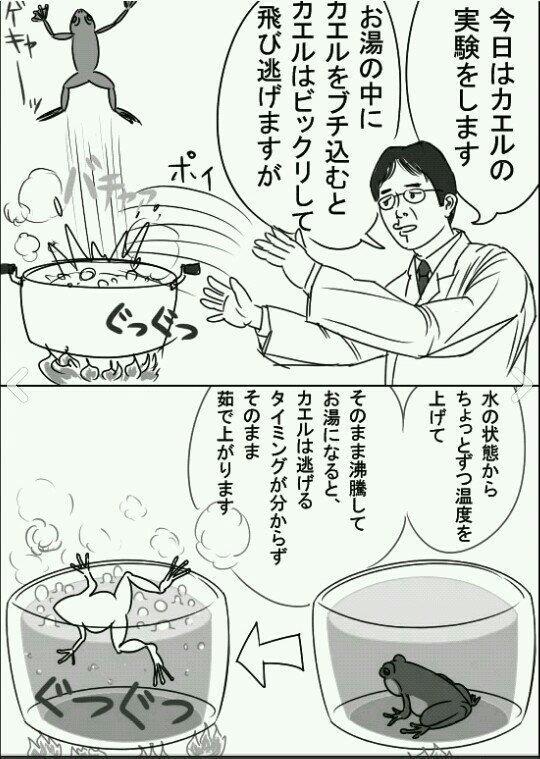 茹でガエルの法則